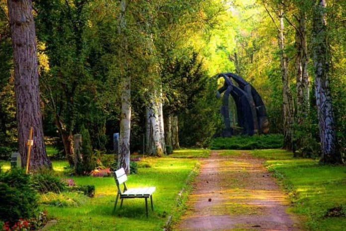 Strata Gardening and Maintenance