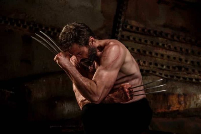 Wolverine Beard