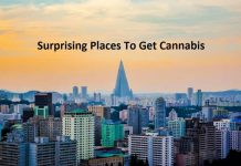 Cannabis places