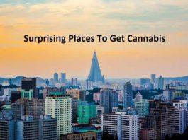 Cannabis places