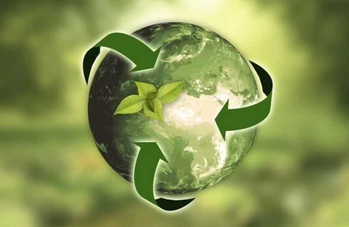 Recycling Trends