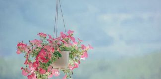 Artificial Hanging Plants and Flowers