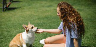 Detoxifying your pet